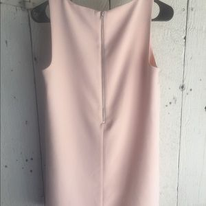 Forever 21 Dresses - Pink Shift Dress